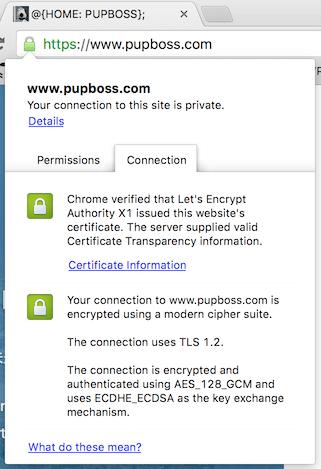 已使用证书 Chrome 浏览器显示结果