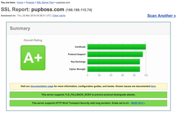 SSL Labs 测试结果